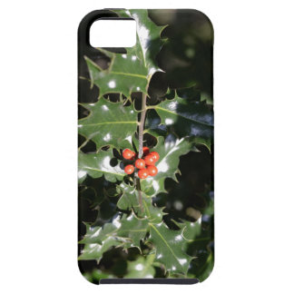 Christmas Holly Berries iPhone 5 Cases