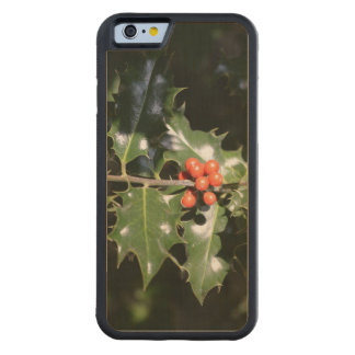 Christmas Holly Berries Maple iPhone 6 Bumper Case