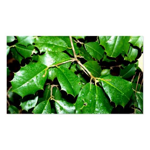 Christmas Holly Leaves Business Cards