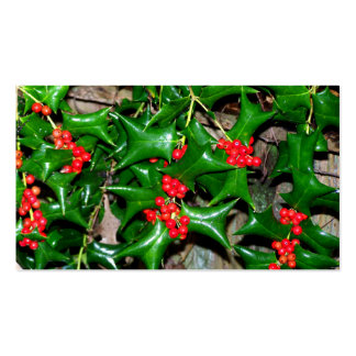 Christmas Holly Pack Of Standard Business Cards