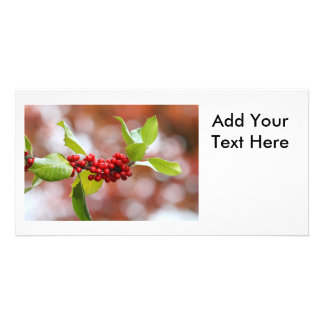 Christmas Holly Picture Card