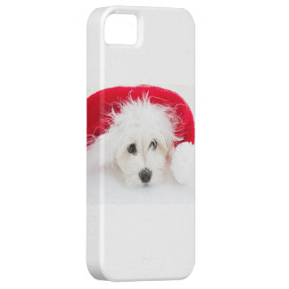 Christmas hull iPhone 5 cases