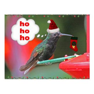 Christmas Hummingbird with Christmas Stocking Postcard