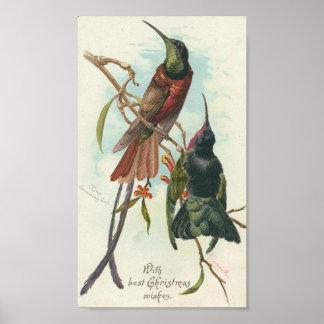 Christmas Hummingbirds Poster