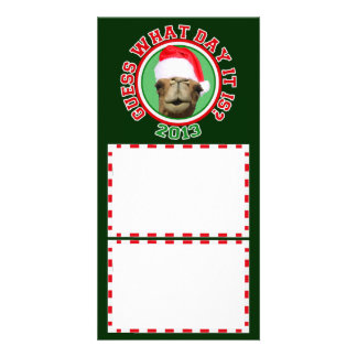 Christmas Hump Day Camel 2013 Photo Cards