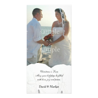 Christmas is Love Sand Dollars Wedding Photo Cards
