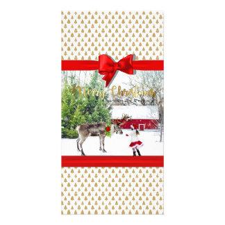 Christmas Joy and Peace Photo Card