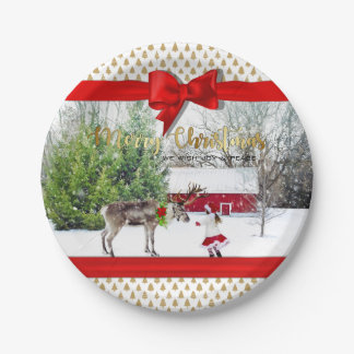 Christmas Joy and Peace Photo Paper Plate