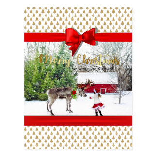 Christmas Joy and Peace Photo Postcard