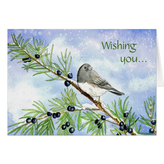 Christmas junco in the juniper card