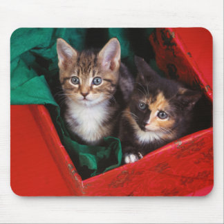Christmas Kittens Mouse Pad