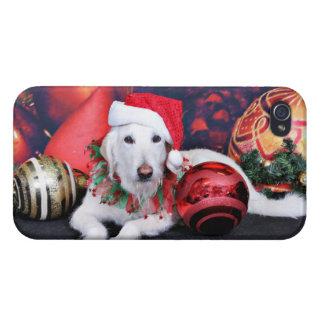 Christmas - LabraDoodle - Izzy iPhone 4 Case