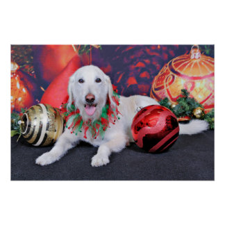 Christmas - LabraDoodle - Izzy Poster