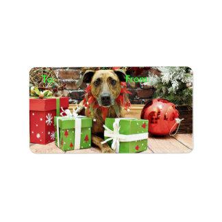 Christmas - Labrador X - Guiness Address Label