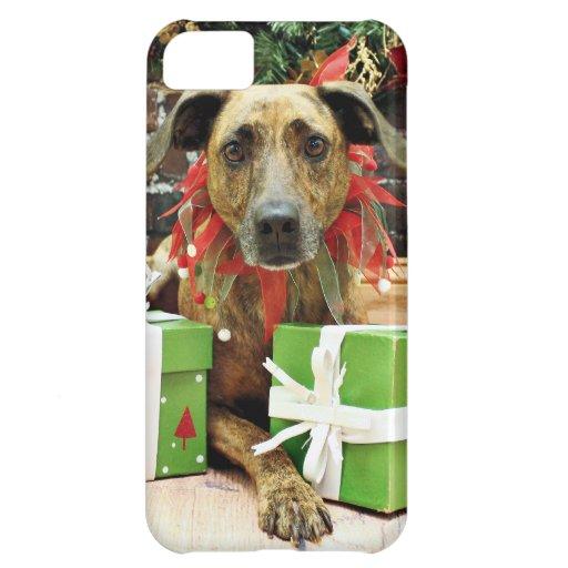 Christmas - Labrador X - Guiness iPhone 5C Cover