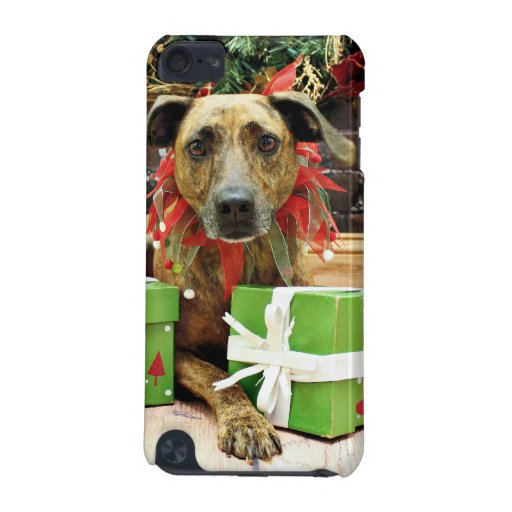 Christmas - Labrador X - Guiness iPod Touch (5th Generation) Case