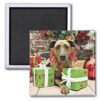 Christmas - Labrador X - Guiness Fridge Magnet