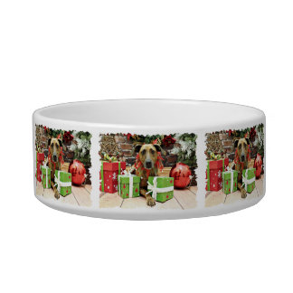 Christmas - Labrador X - Guiness Cat Water Bowls
