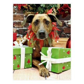 Christmas - Labrador X - Guiness Postcards