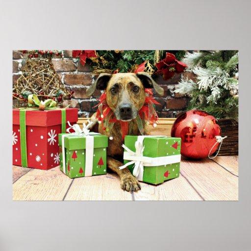 Christmas - Labrador X - Guiness Posters