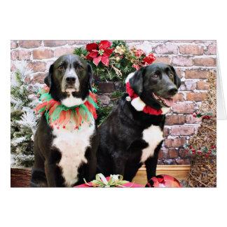 Christmas - Labradors - Joplin and Lennon Greeting Card