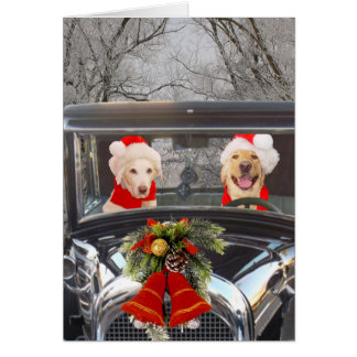 Christmas Labs in Car Card