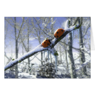 Christmas ladybirds card