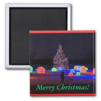 Christmas Lights Magnets