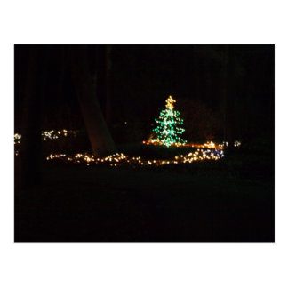 christmas lights postcard
