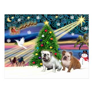 Christmas Magic English Bulldogs (two) Postcard