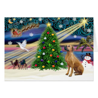Christmas Magic Rhodesian Ridgeback 1 Card