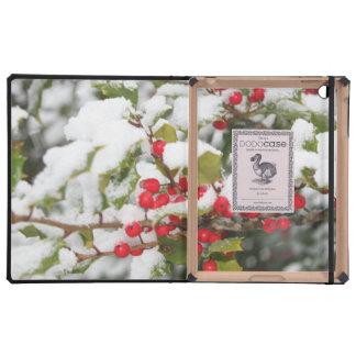 Christmas MF iPad Case