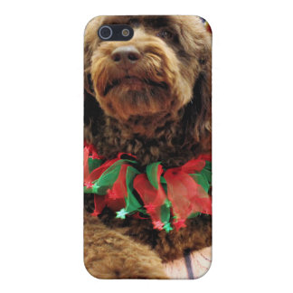 Christmas - Mini GoldenDoodle - Charlie iPhone 5 Cases