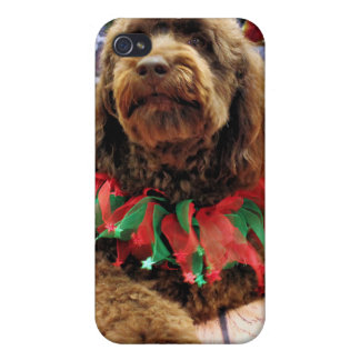 Christmas - Mini GoldenDoodle - Charlie iPhone 4/4S Cover