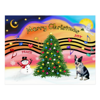 Christmas Music 2 - Australian Cattle Dog 1 Postcard