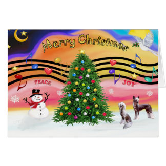 Christmas Music 2 - Chinese Crested (2 HL) Card