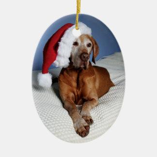 Christmas Ornament (Flynn)