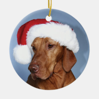 Christmas Ornament (Rogan)