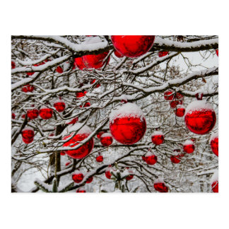 Christmas ornaments red baubles tree snow branches postcard