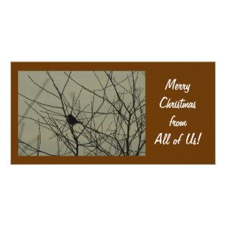 Christmas Photo Card:  Little Bird Card