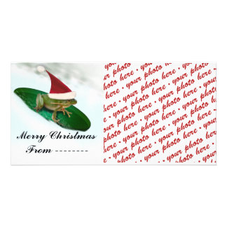 Christmas Photo Card or Photo Gift Tag Photo Cards