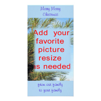 Christmas Pine Photocard-customize completely Photo Cards