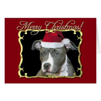 Christmas pitbull dog card