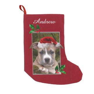 Christmas pitbull puppy personalized Stocking