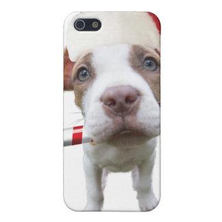 Christmas pitbull - santa pitbull -santa claus dog iPhone 5 cover