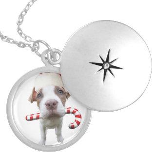 Christmas pitbull - santa pitbull -santa claus dog silver plated necklace