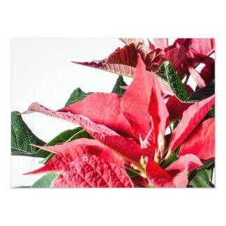 Christmas Poinsettia 14 Cm X 19 Cm Invitation Card