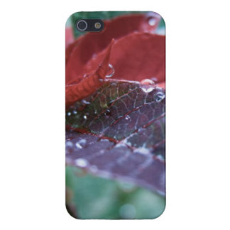 Christmas Poinsettia Case For The iPhone 5