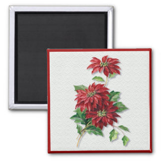 Christmas Poinsettia Square Magnet