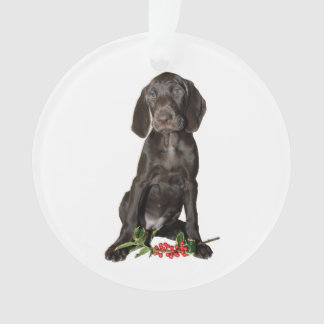 Christmas Pointer Sister Puppy